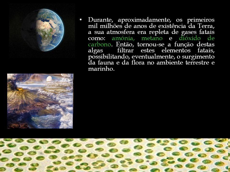 Durante, aproximadamente, os primeiros mil milhões de anos de existência da Terra, a sua atmosfera era repleta de gases fatais como: amónia, metano e dióxido de carbono.