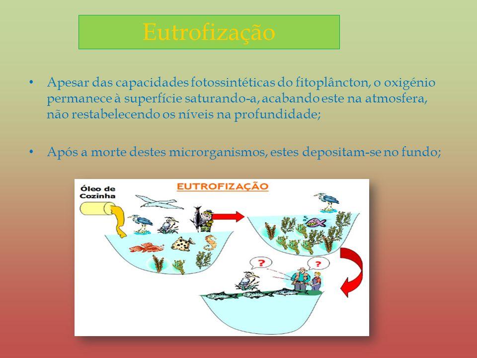 Eutrofização