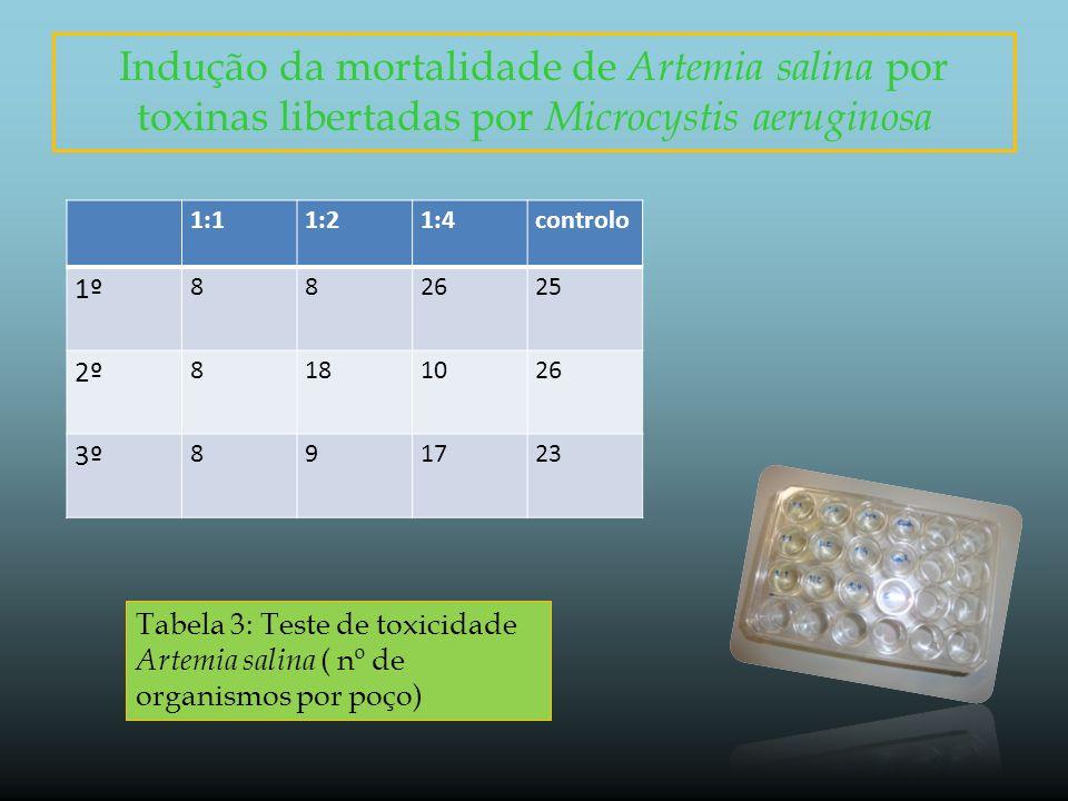 Indução da mortalidade de Artemia salina por toxinas libertadas por Microcystis aeruginosa