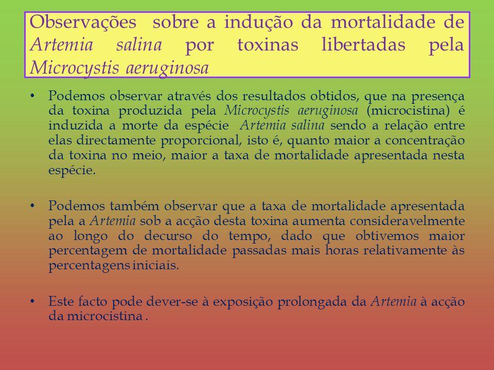 Observações sobre a indução da mortalidade de Artemia salina por toxinas libertadas pela Microcystis aeruginosa