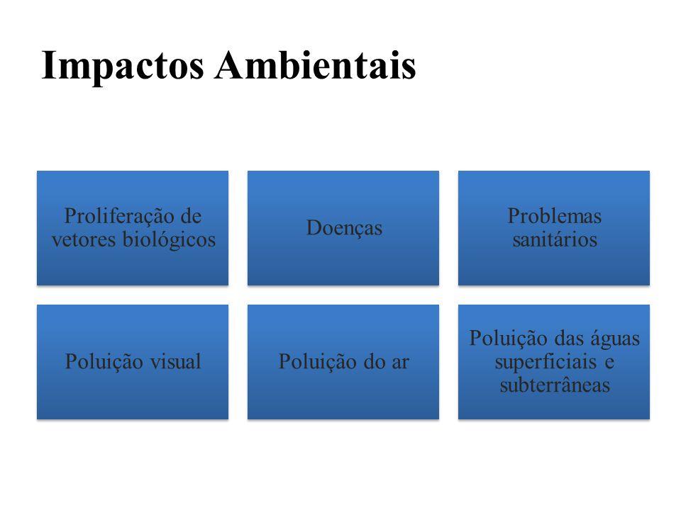 Impactos Ambientais Proliferação de vetores biológicos Doenças