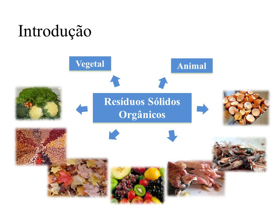 Resíduos Sólidos Orgânicos