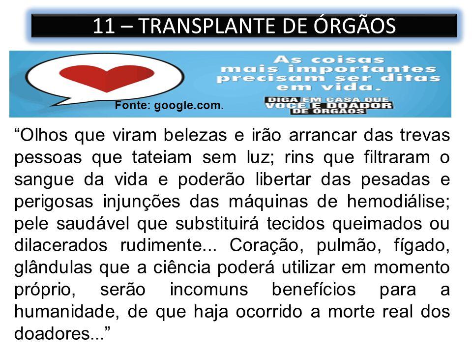 11 – TRANSPLANTE DE ÓRGÃOS