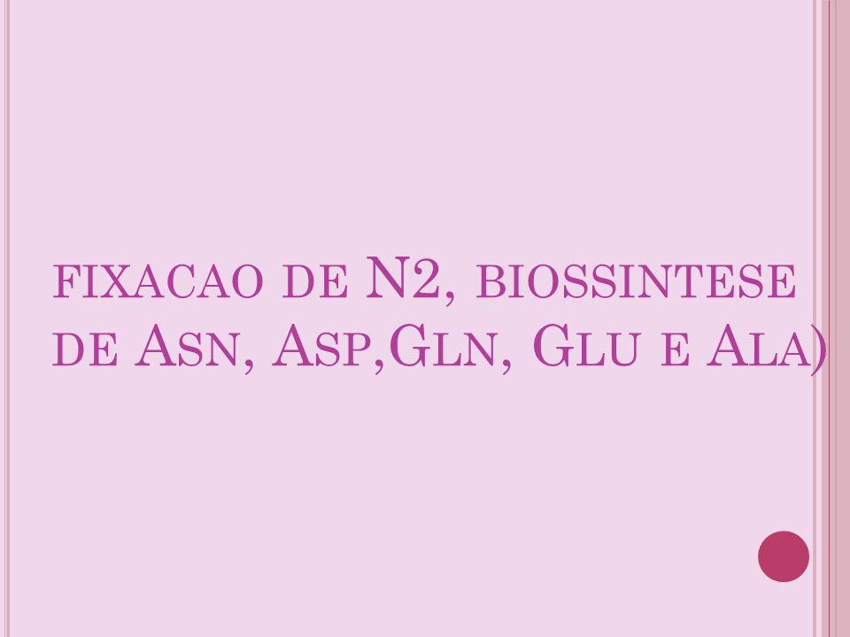 fixacao de N2, biossintese de Asn, Asp,Gln, Glu e Ala)