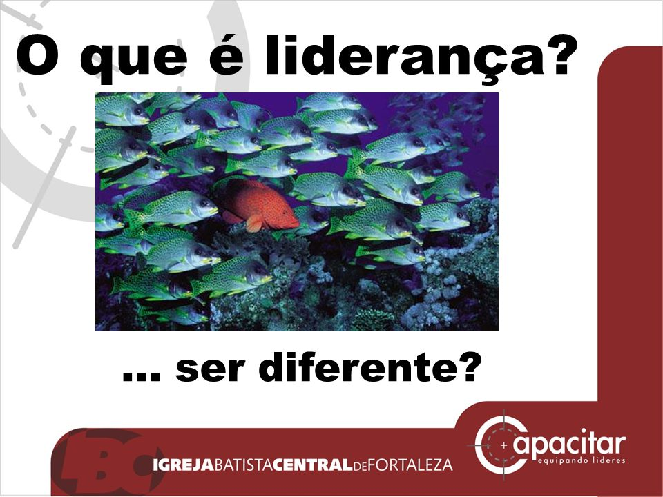 O que é liderança ... ser diferente