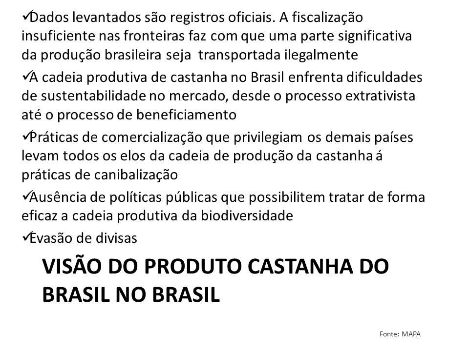 Visão do Produto Castanha do Brasil no Brasil