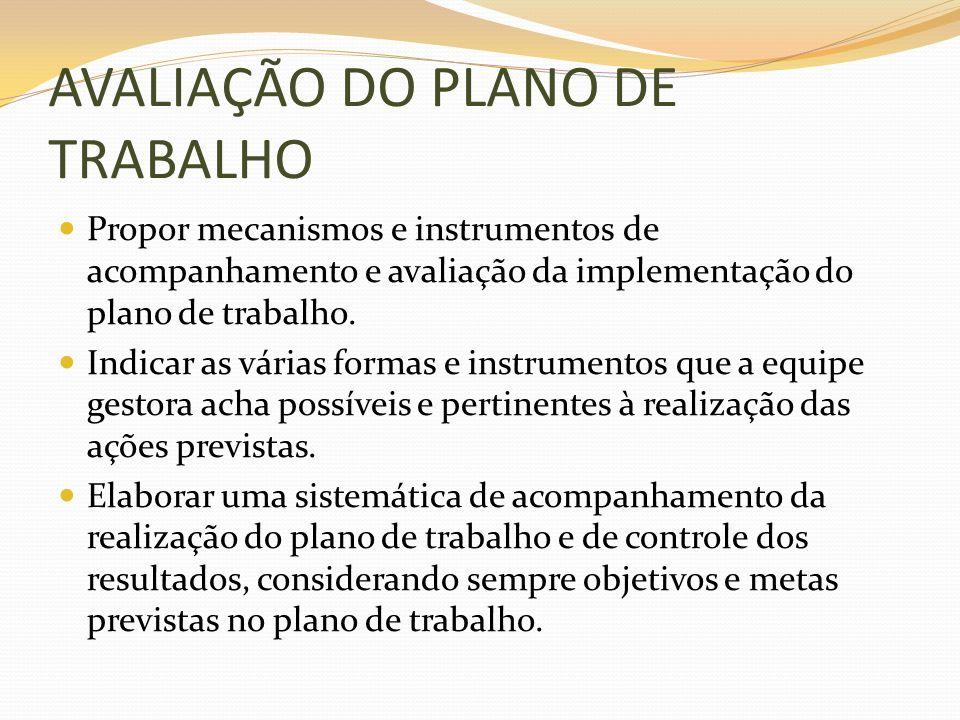 AVALIAÇÃO DO PLANO DE TRABALHO