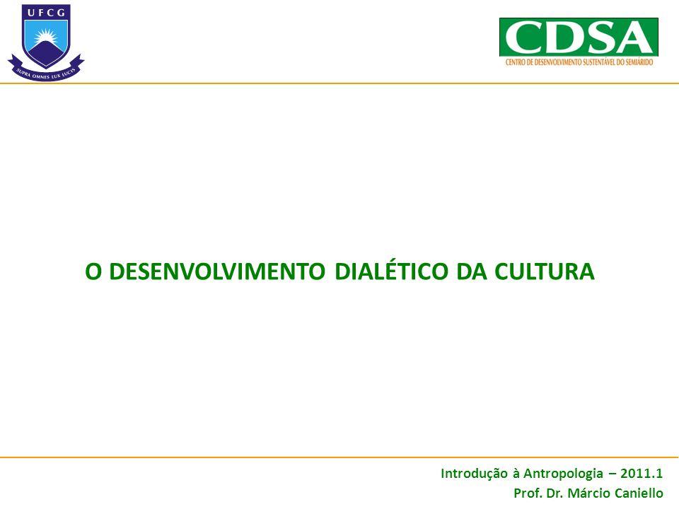 O DESENVOLVIMENTO DIALÉTICO da cultura