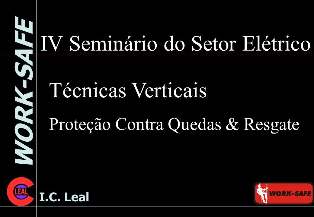 IV Seminário do Setor Elétrico