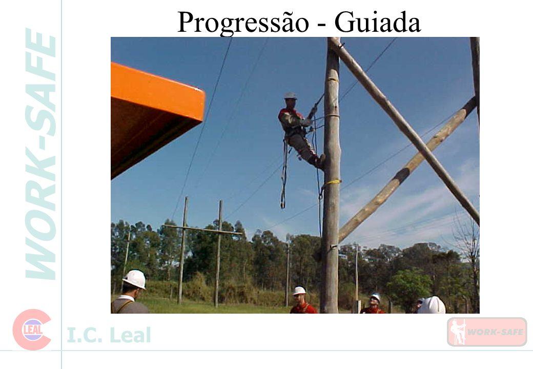 Progressão - Guiada