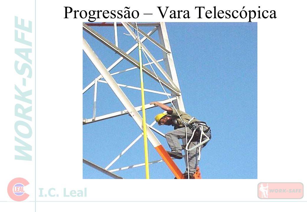 Progressão – Vara Telescópica
