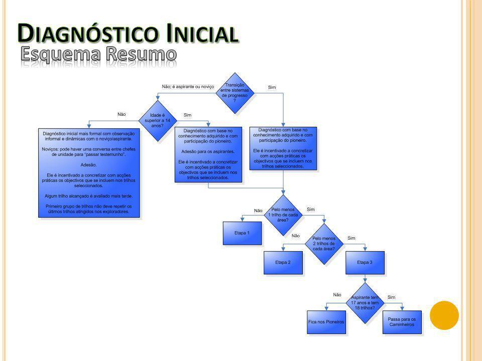 Diagnóstico Inicial Esquema Resumo