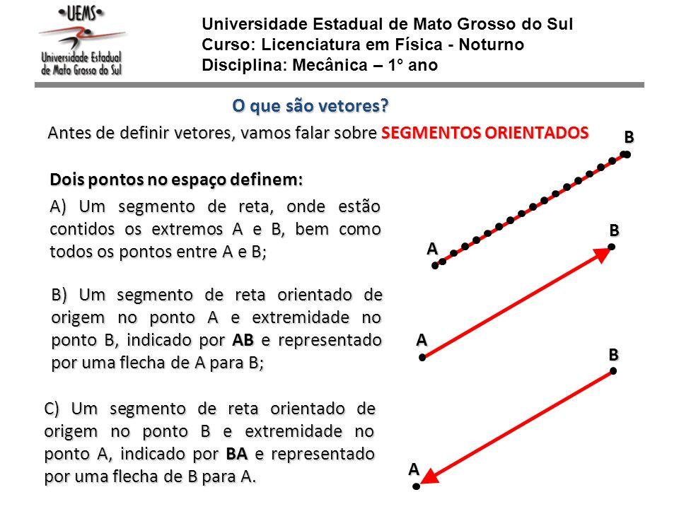 Universidade Estadual de Mato Grosso do Sul Curso: Licenciatura em Física - Noturno Disciplina: Mecânica – 1° ano
