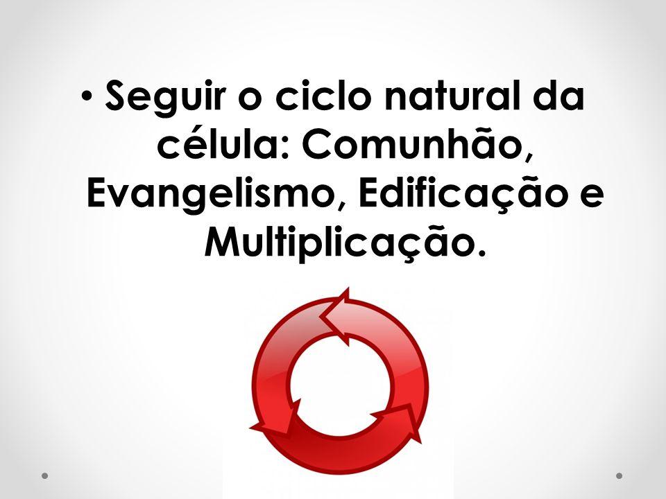 Seguir o ciclo natural da célula: Comunhão, Evangelismo, Edificação e Multiplicação.