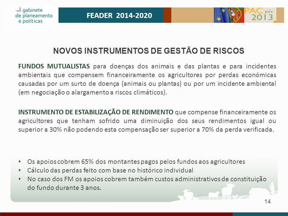 NOVOS INSTRUMENTOS DE GESTÃO DE RISCOS