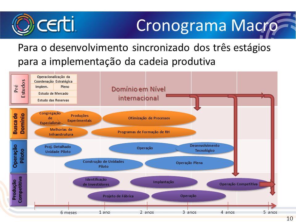 Cronograma Macro Para o desenvolvimento sincronizado dos três estágios para a implementação da cadeia produtiva.