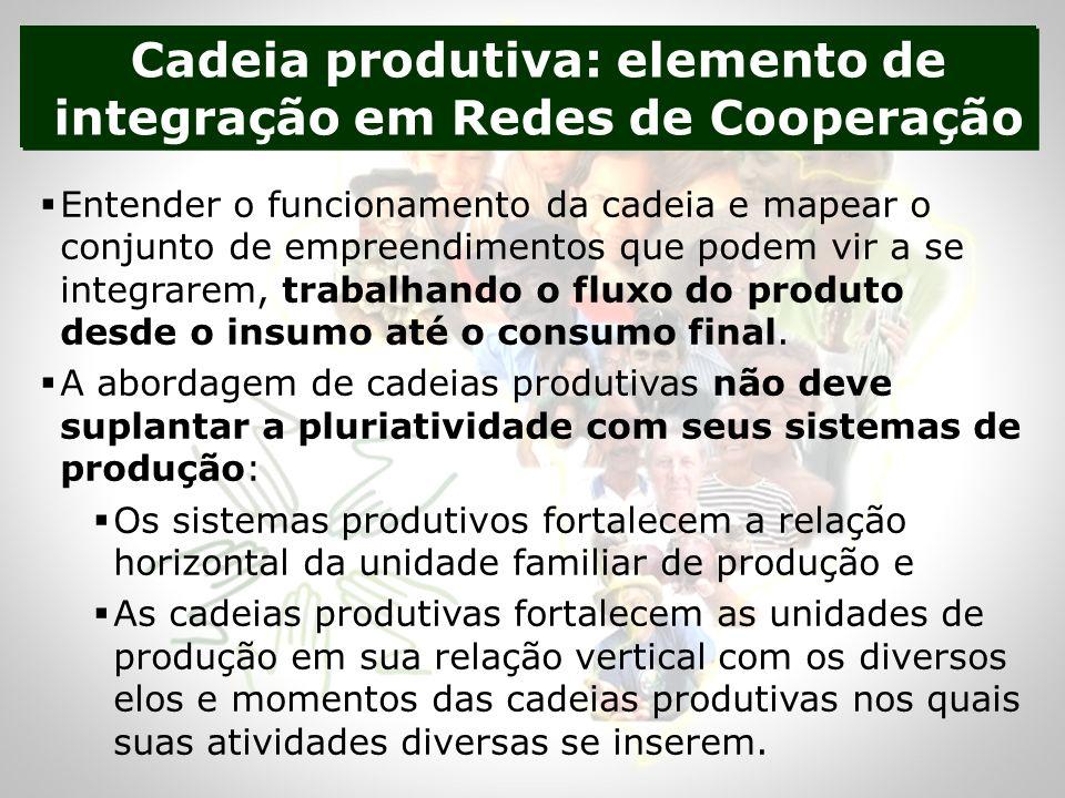 Cadeia produtiva: elemento de integração em Redes de Cooperação