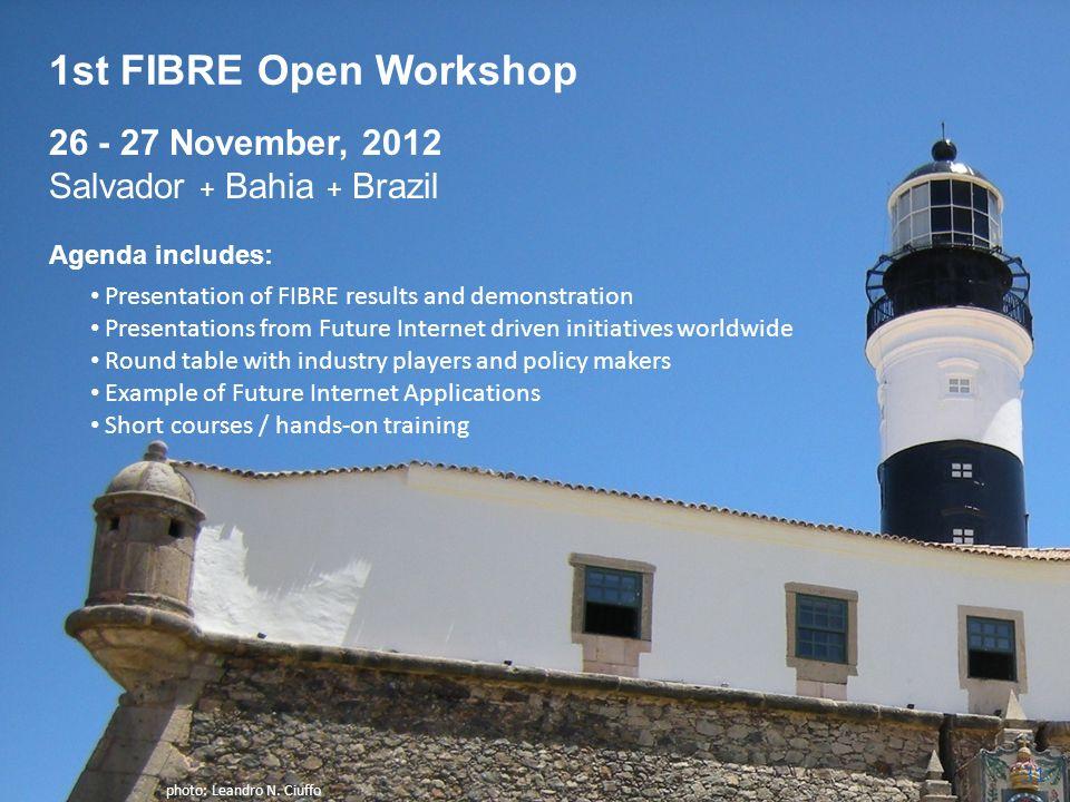 1st FIBRE Open Workshop 26 - 27 November, 2012