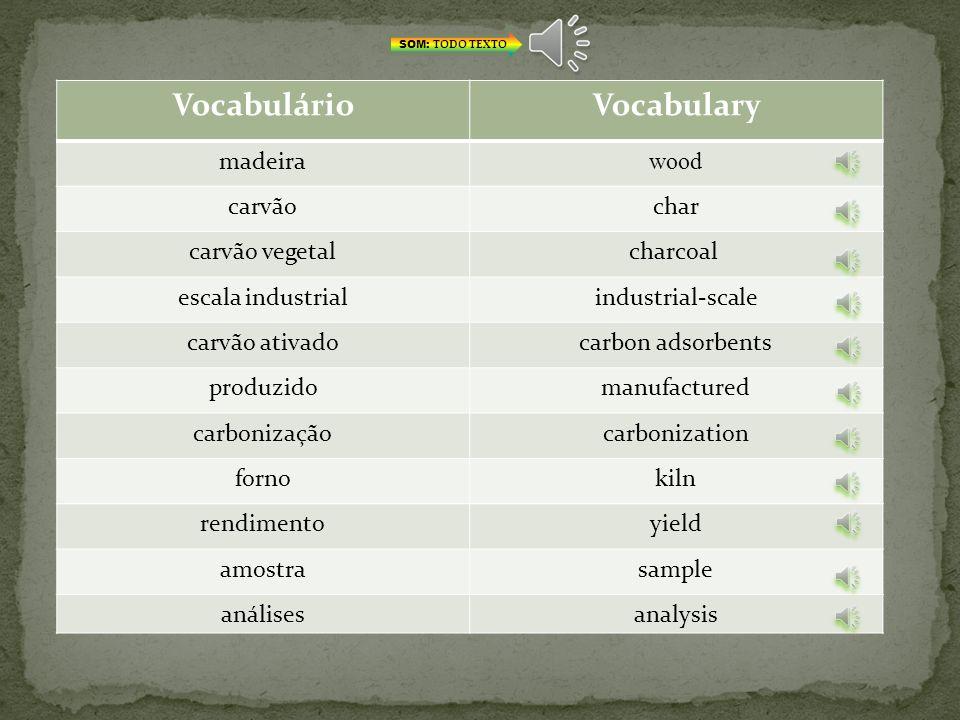 Vocabulário Vocabulary