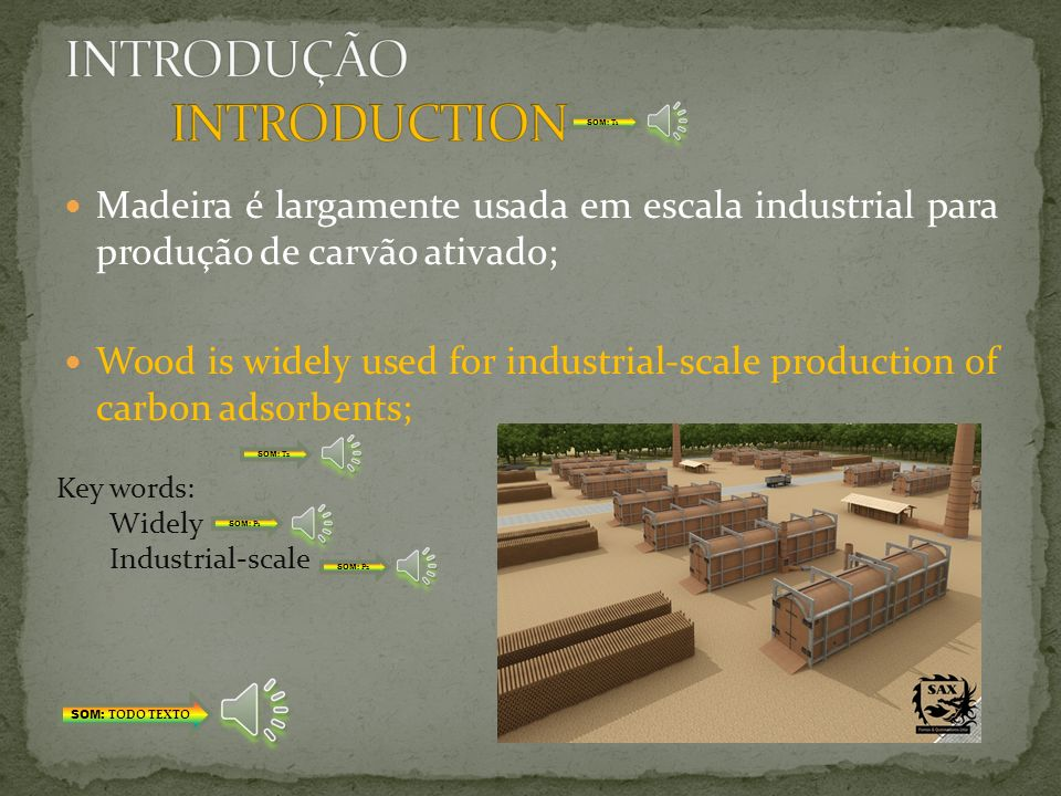 INTRODUÇÃO INTRODUCTION