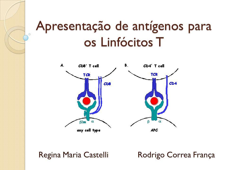 Apresentação de antígenos para os Linfócitos T