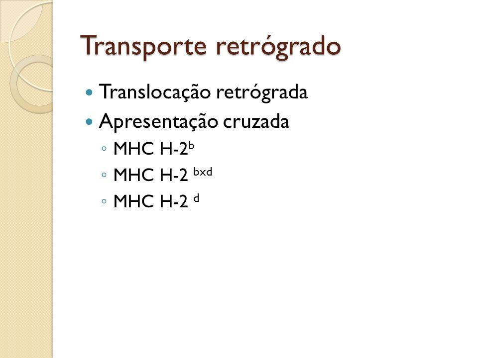 Transporte retrógrado