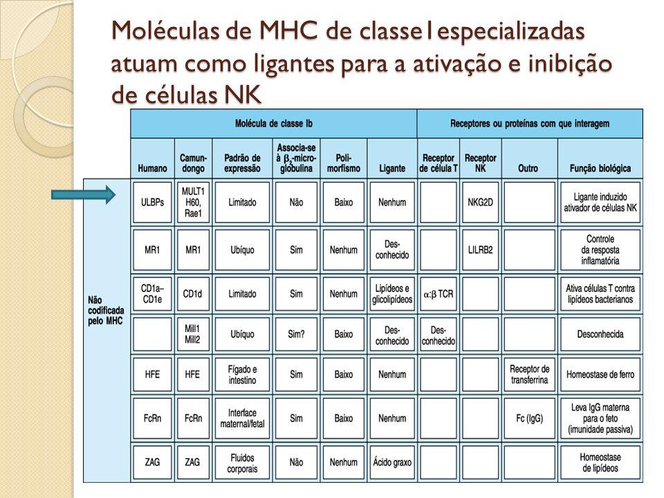 Moléculas de MHC de classe1especializadas atuam como ligantes para a ativação e inibição de células NK