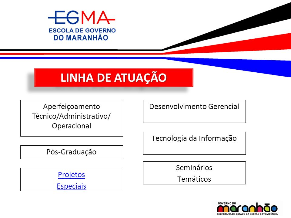LINHA DE ATUAÇÃO Aperfeiçoamento Técnico/Administrativo/ Operacional