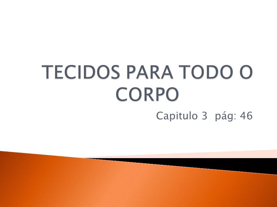 TECIDOS PARA TODO O CORPO