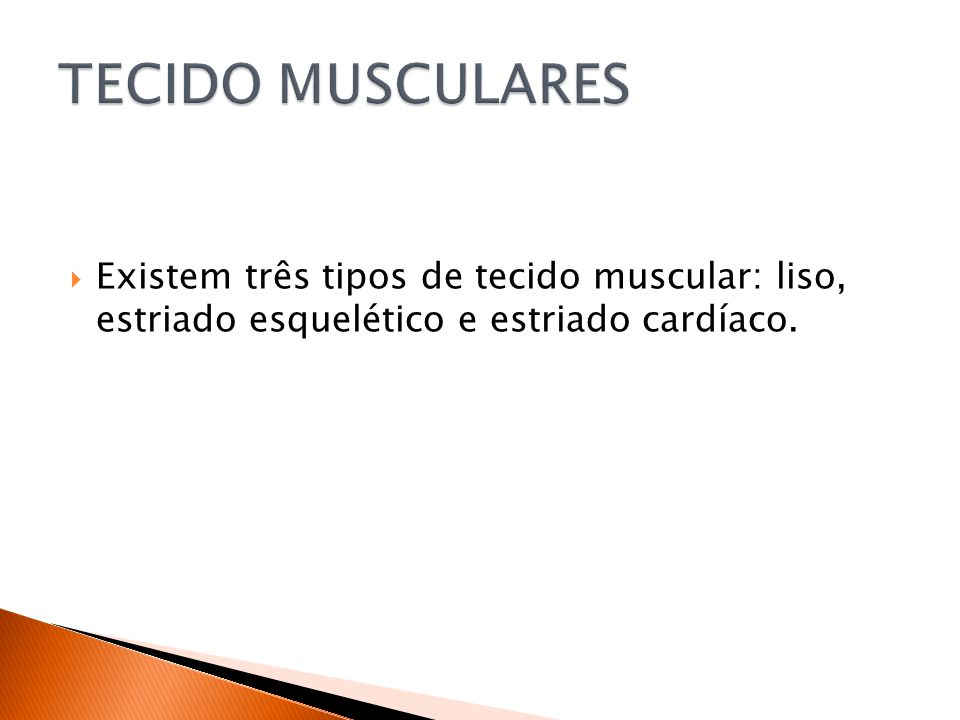 TECIDO MUSCULARES Existem três tipos de tecido muscular: liso, estriado esquelético e estriado cardíaco.