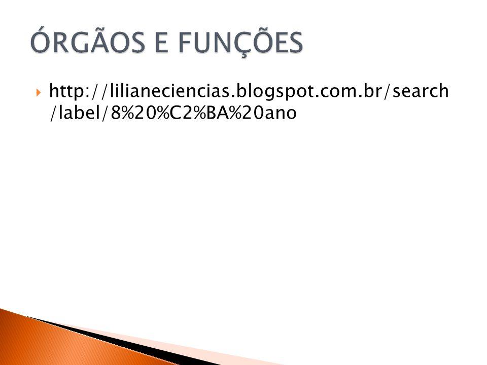 ÓRGÃOS E FUNÇÕES http://lilianeciencias.blogspot.com.br/search /label/8%20%C2%BA%20ano