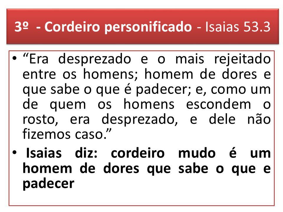 3º - Cordeiro personificado - Isaias 53.3