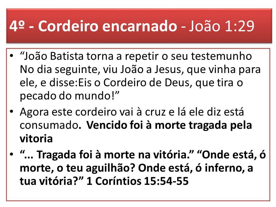 4º - Cordeiro encarnado - João 1:29