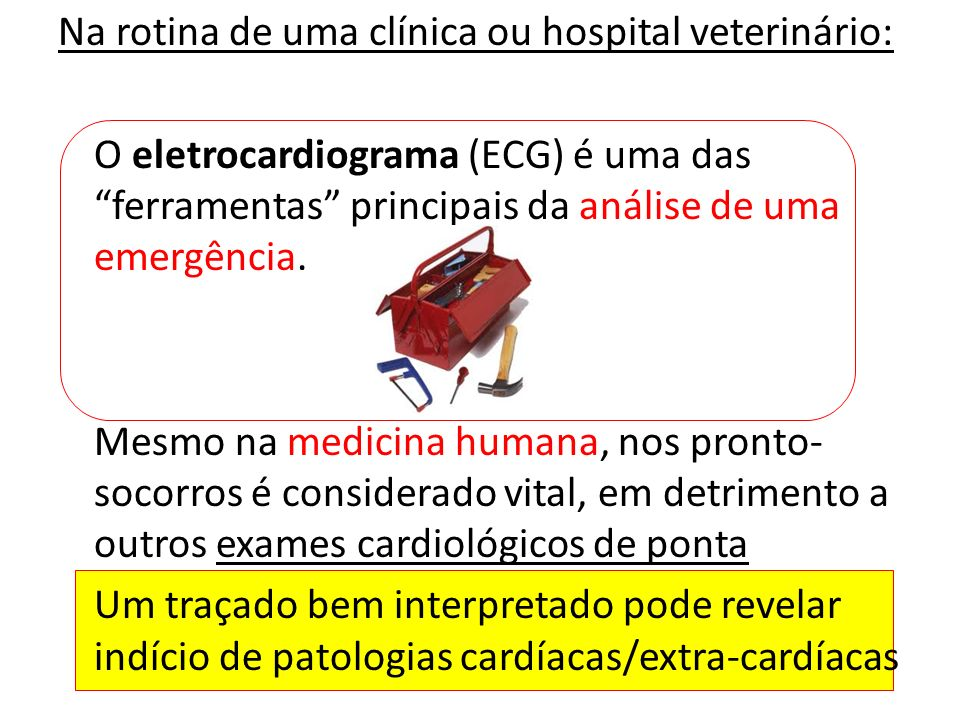 Na rotina de uma clínica ou hospital veterinário: O eletrocardiograma (ECG) é uma das ferramentas principais da análise de uma emergência.