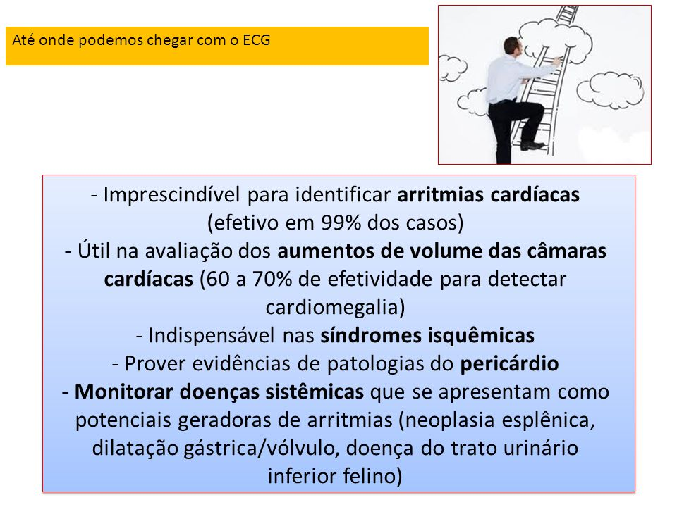 Até onde podemos chegar com o ECG