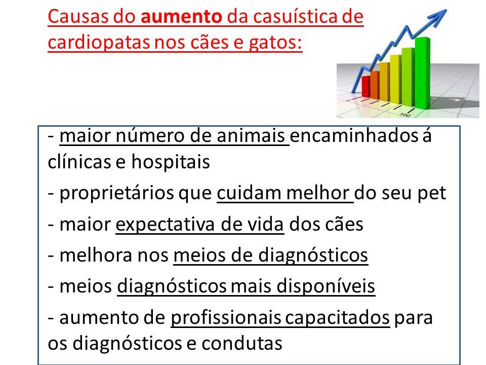Causas do aumento da casuística de cardiopatas nos cães e gatos:
