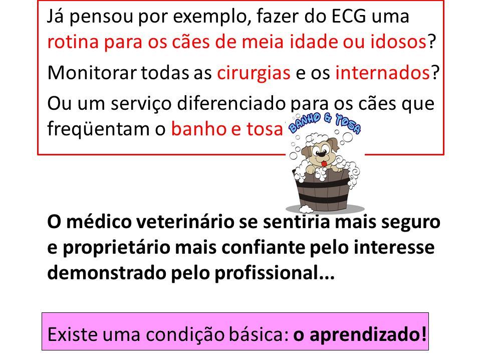 Já pensou por exemplo, fazer do ECG uma rotina para os cães de meia idade ou idosos