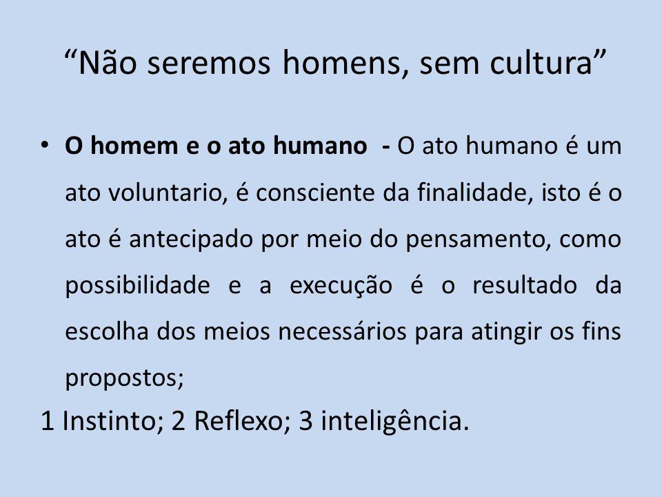 Não seremos homens, sem cultura