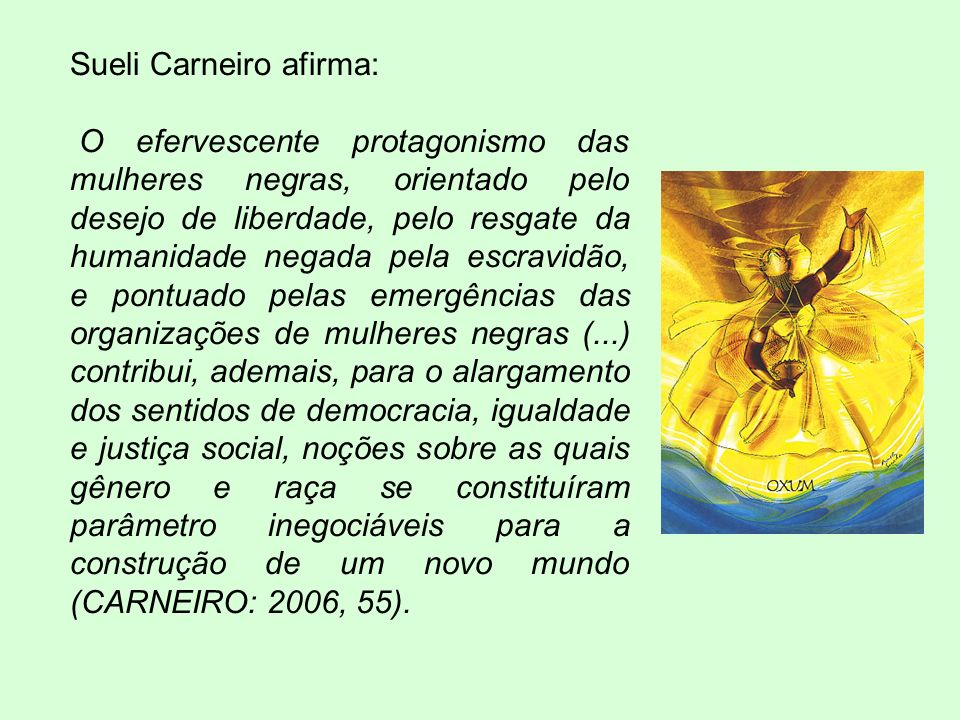 Sueli Carneiro afirma: