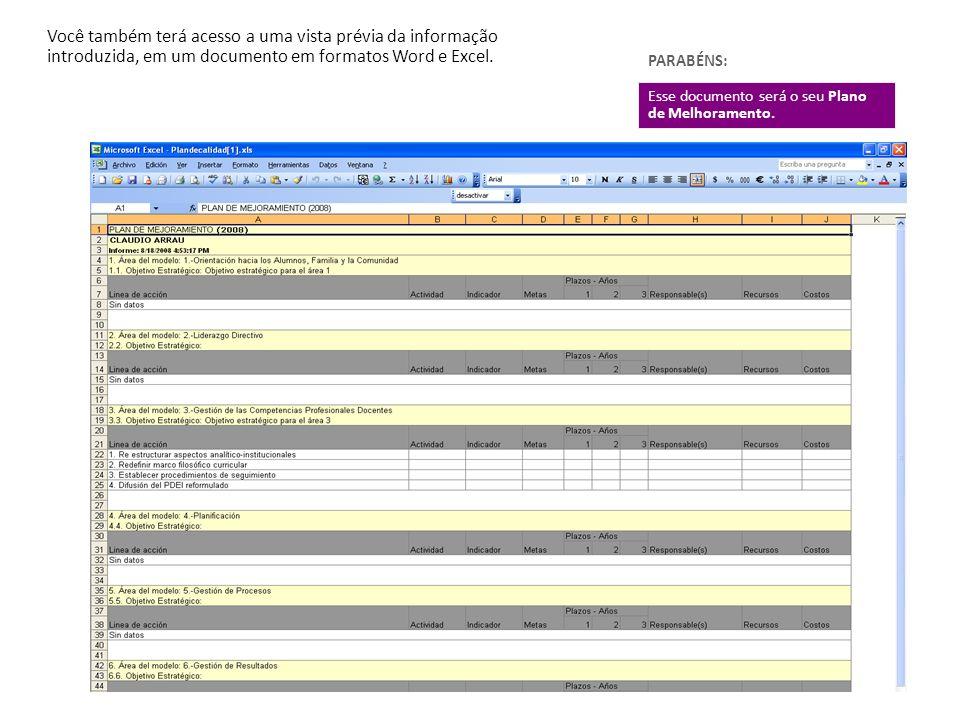 Você também terá acesso a uma vista prévia da informação introduzida, em um documento em formatos Word e Excel.