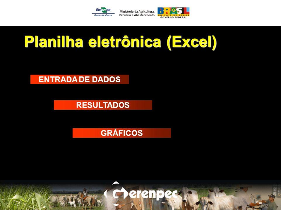Planilha eletrônica (Excel)