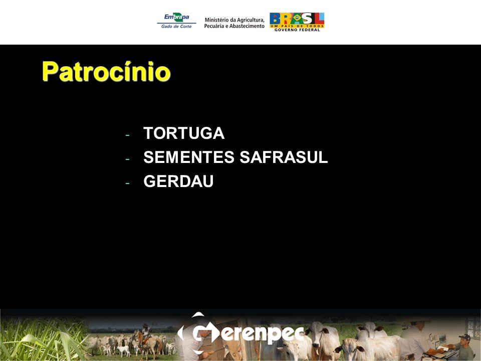 Patrocínio TORTUGA SEMENTES SAFRASUL GERDAU