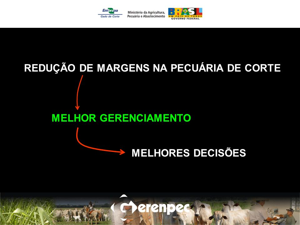 REDUÇÃO DE MARGENS NA PECUÁRIA DE CORTE