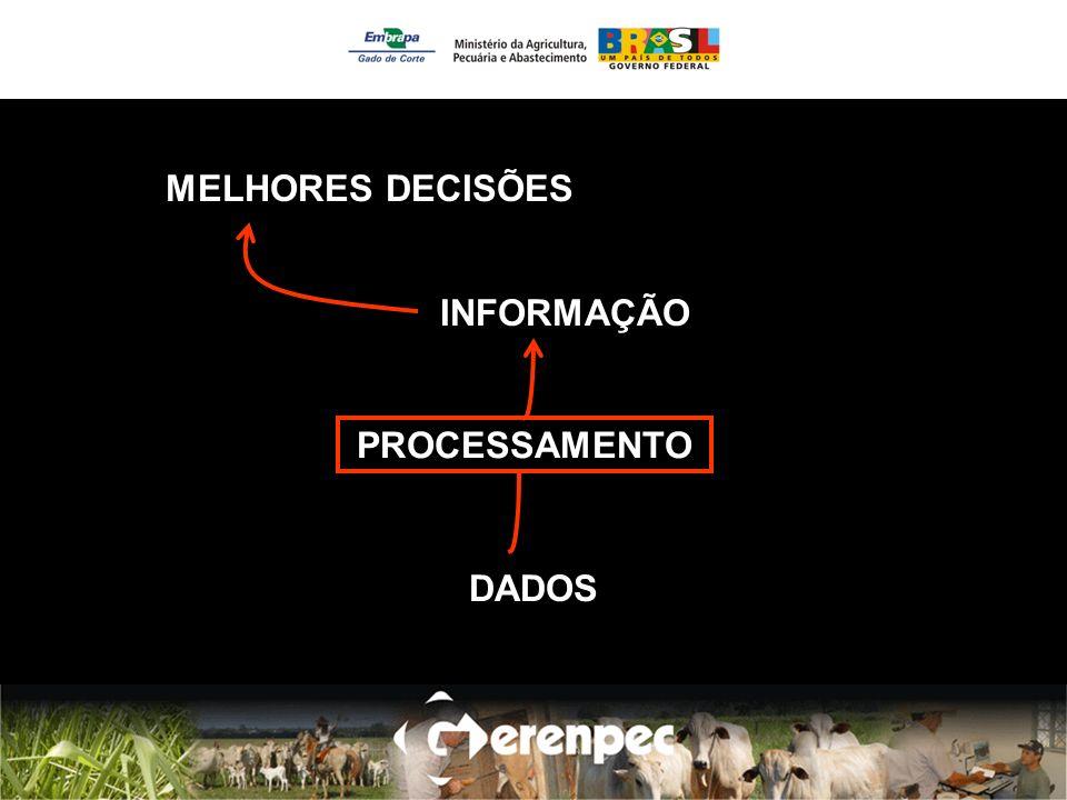 MELHORES DECISÕES INFORMAÇÃO DADOS PROCESSAMENTO