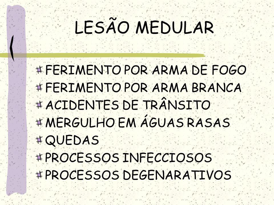 LESÃO MEDULAR FERIMENTO POR ARMA DE FOGO FERIMENTO POR ARMA BRANCA