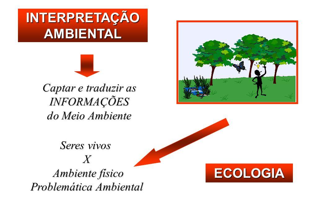 INTERPRETAÇÃO AMBIENTAL