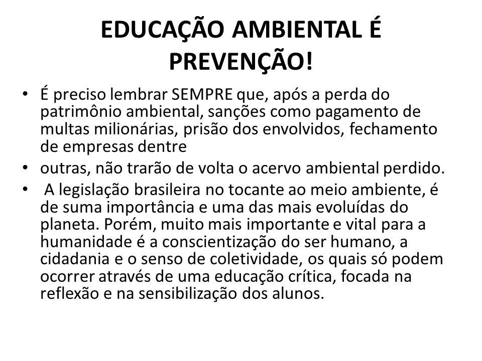 EDUCAÇÃO AMBIENTAL É PREVENÇÃO!