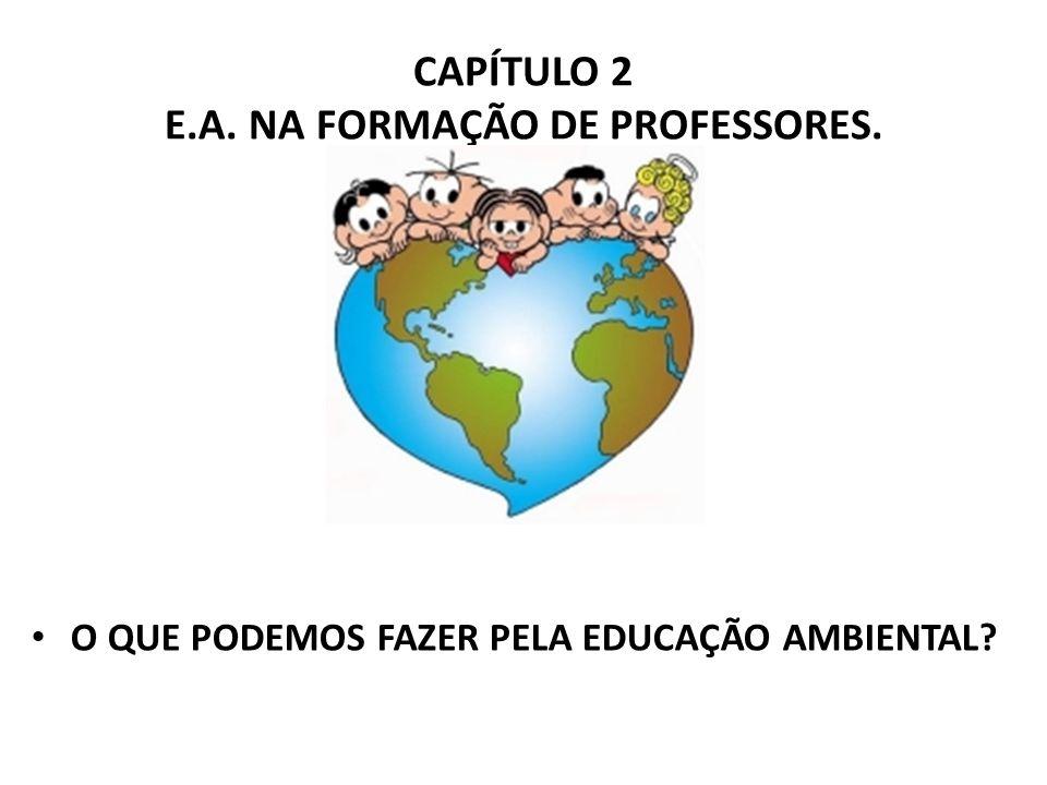 CAPÍTULO 2 E.A. NA FORMAÇÃO DE PROFESSORES.