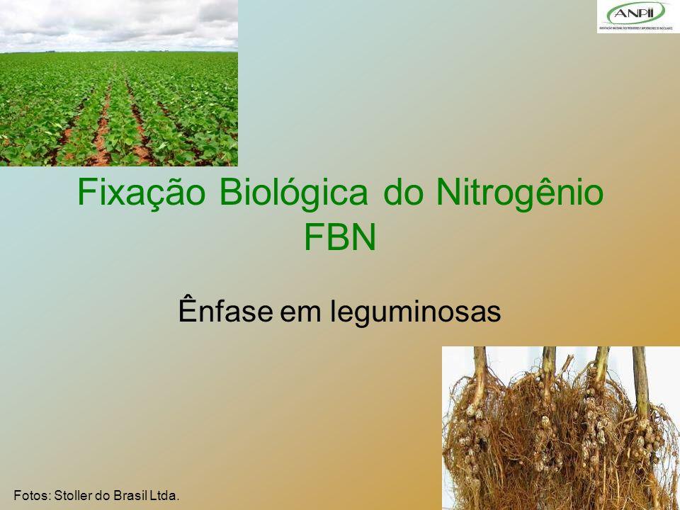 Fixação Biológica do Nitrogênio FBN
