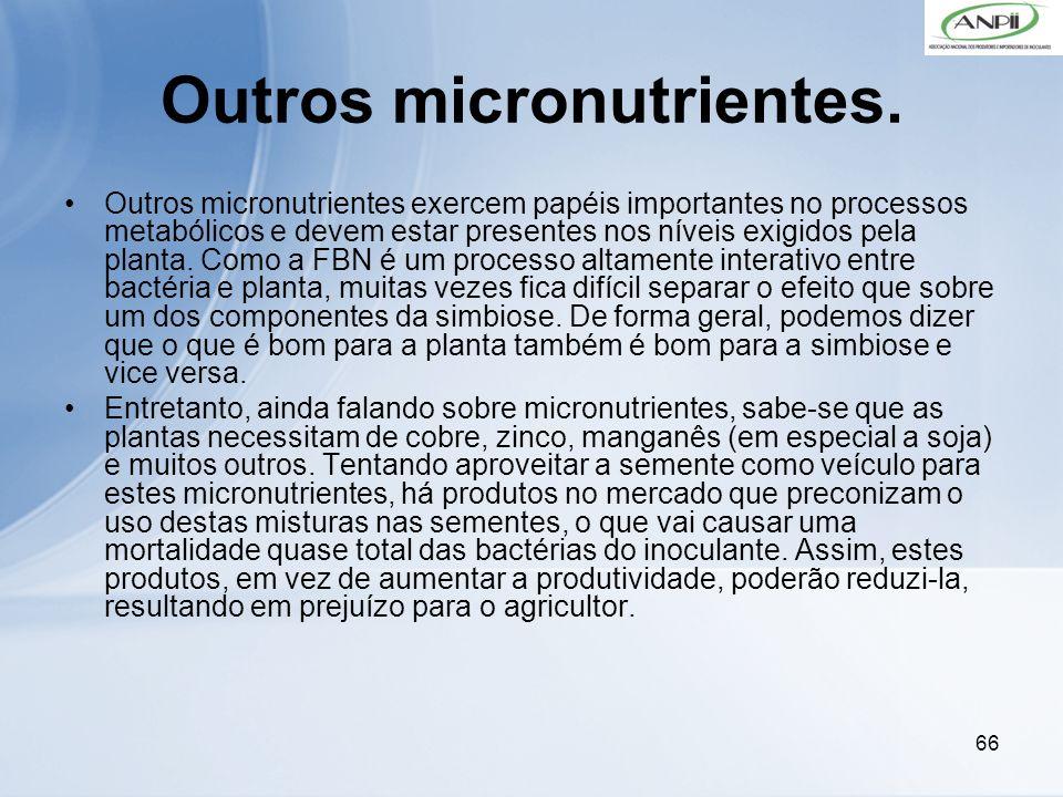 Outros micronutrientes.